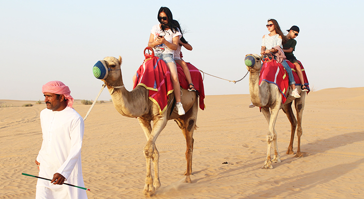 Morning Desert Safari- Dune Bashing- Camel Ride-Sand Boarding-Camping With Refreshment At Dubai